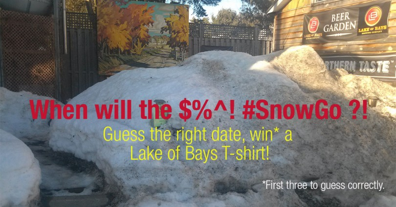 Win an LB T-shirt! Guess when the snow will be gone from our patio!