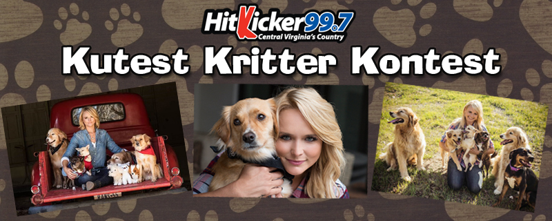 HitKicker Cutest Critter Contest